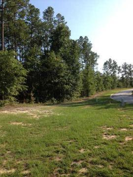 $74,200 Aiken, WOW! This wooded, easily built upon lot has an