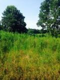 $82,500 30+/- Acres 45 minutes North of Lafayette For Sale