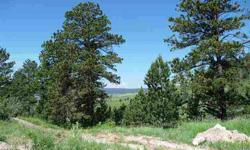 Choice Black Hills Lot, close to town, plenty of trees for privacy,level building site, wonderful views to the West & East, paved road, Black Hawk Water, gas, power and phone to lot line. Premier Builder available if requested with multiple home