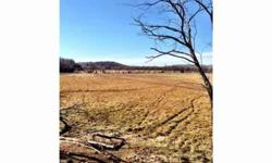 44 acres of nice land with many possibilities.,A total of 423 acres available in several options.