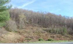 #2291 - Rose Hill, VA - THIS IS THE PERFECT TRACT OF LAND for your new home on this 10 acres that it is unrestricted, 2 springs, creek and road frontage, city water available; what more could you ask for and less than 5 minutes to Hwy 58; $30,000; call