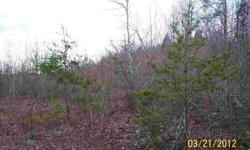 20 acre tract in Halifax County. Great for homesite or a recreational retreat.