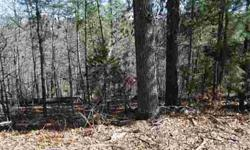 Secluded, treed lot in great neighborhood by the lake. Lot slopes away from road