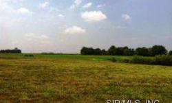 Large flat lot with huge yard backs. This would be a terrific place to build your dream home as the lot does not back directly to another home. Public water, close to everything, Millstadt Grade School, Country Setting.Listing originally posted at http