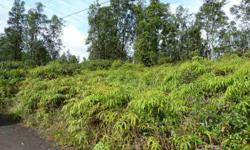 2 buildable lots for sale in tiki gardens, large Ohia trees, affordable middle puna subdivision located off Ainaloa blvd between Keaau and Pahoa. Looking for land? I can help!