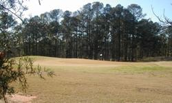 lIVE ON THE 5TH GREEN. lOT ON THE GOLF COURSE, TURTLE COVE COMMUNITY ON LAKE JACKSON GA.
